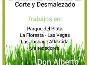 Jardinero 092 091 685 Corte y Desmalezado